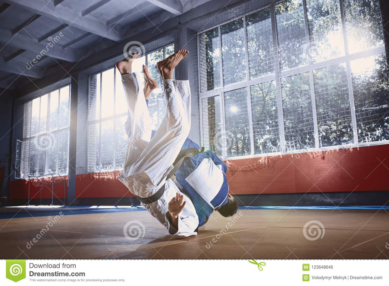 Two Judo Fighters Showing Technical Skill While Practicing Martial