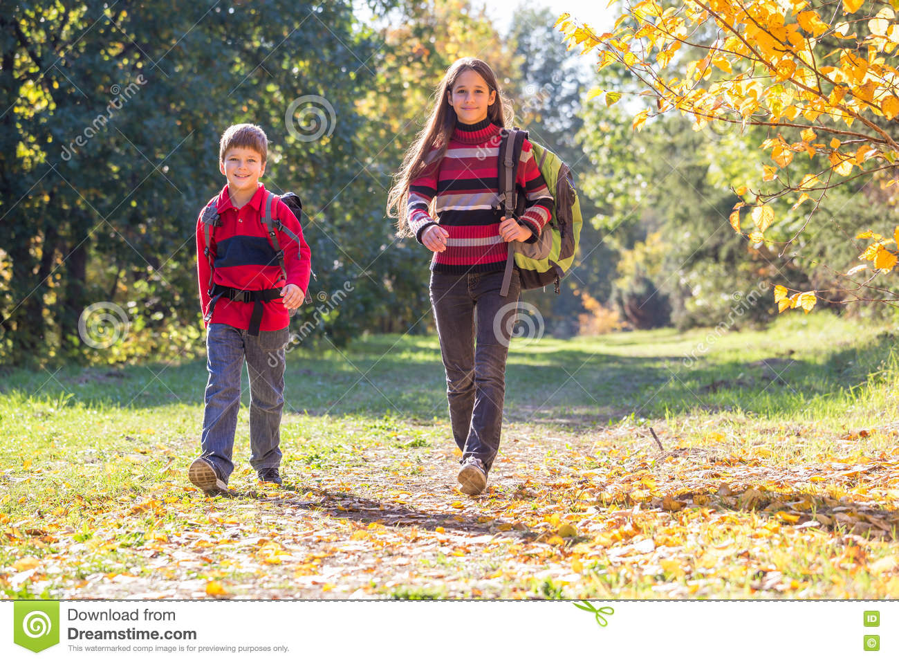Two Kids Walking On Autumn Forest With Backpacks Stock Photo Image
