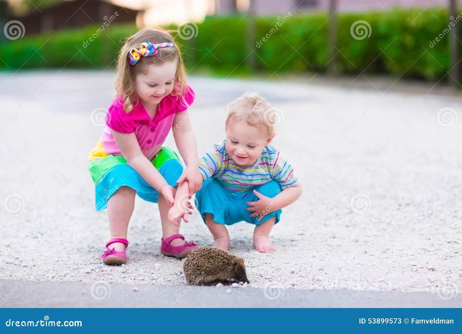 Two kids watching a hedgehog