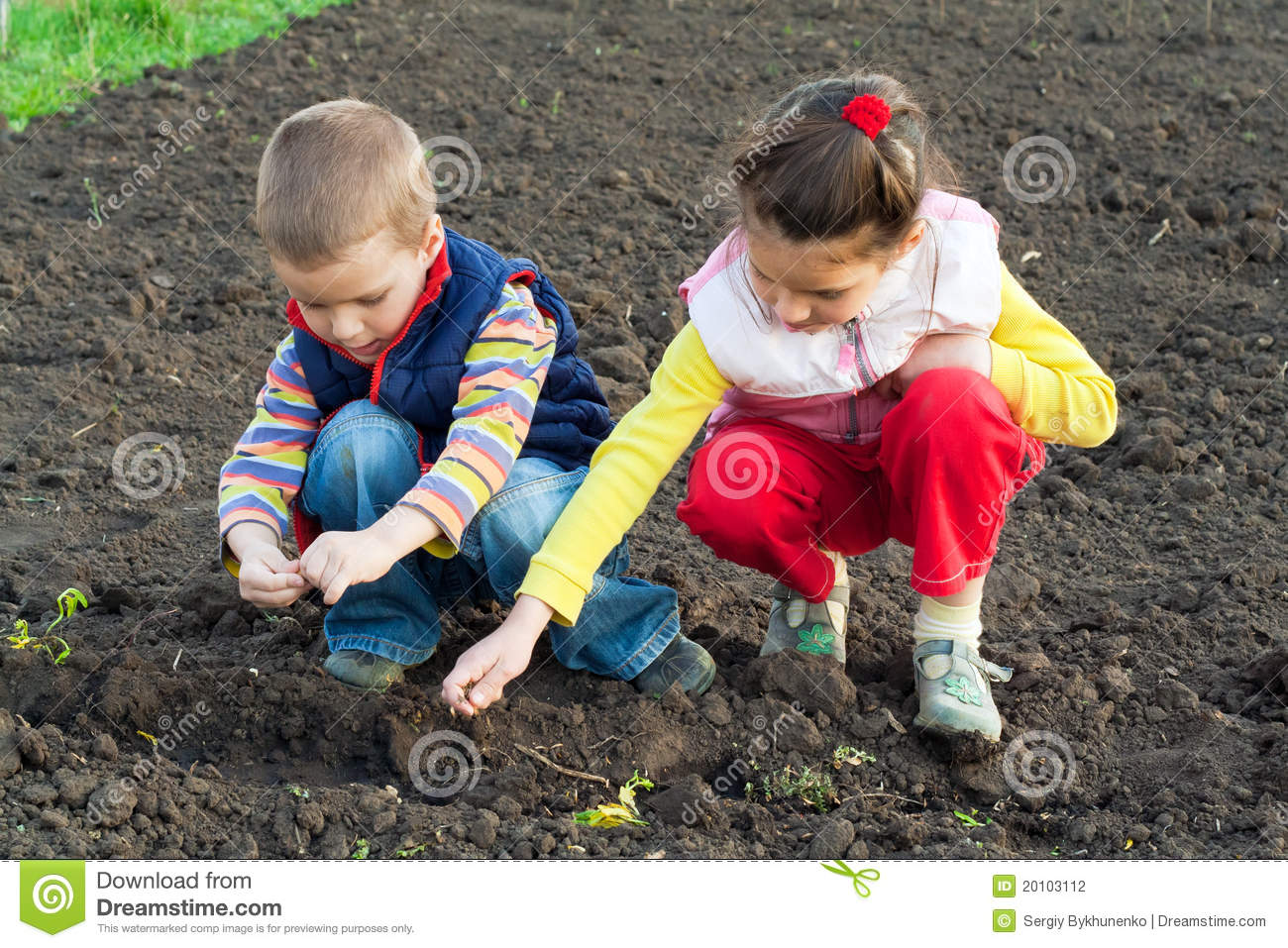 Two Little Children Planting Seeds In The Field Stock