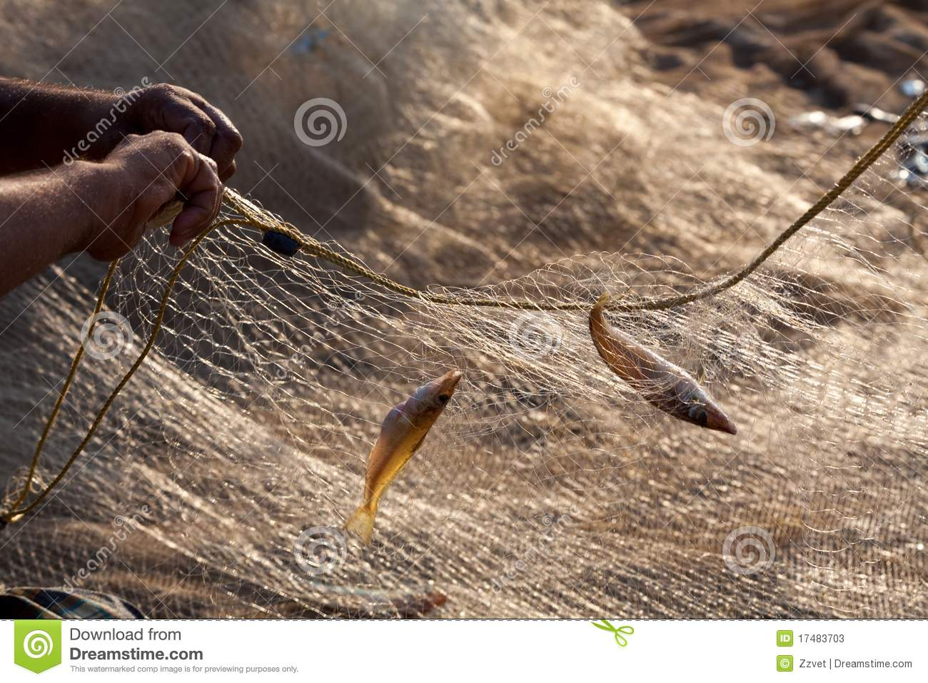Two little fish in the nets stock photos image 17483703 for Fish nets near me