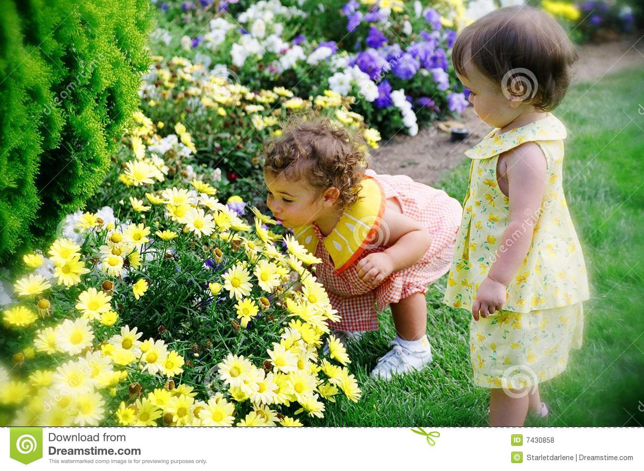 young-girls-flowering
