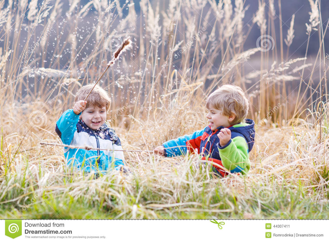 Two Little Sibling Boys Fighting And Having Fun Royalty Free Stock Photo