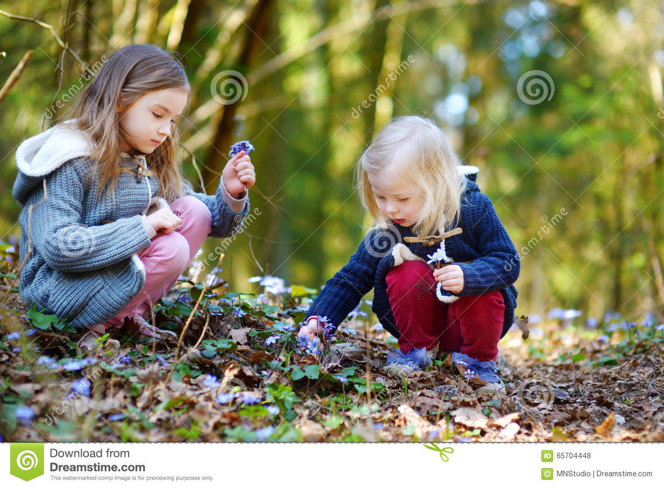 Two little sisters picking the first flowers of spring