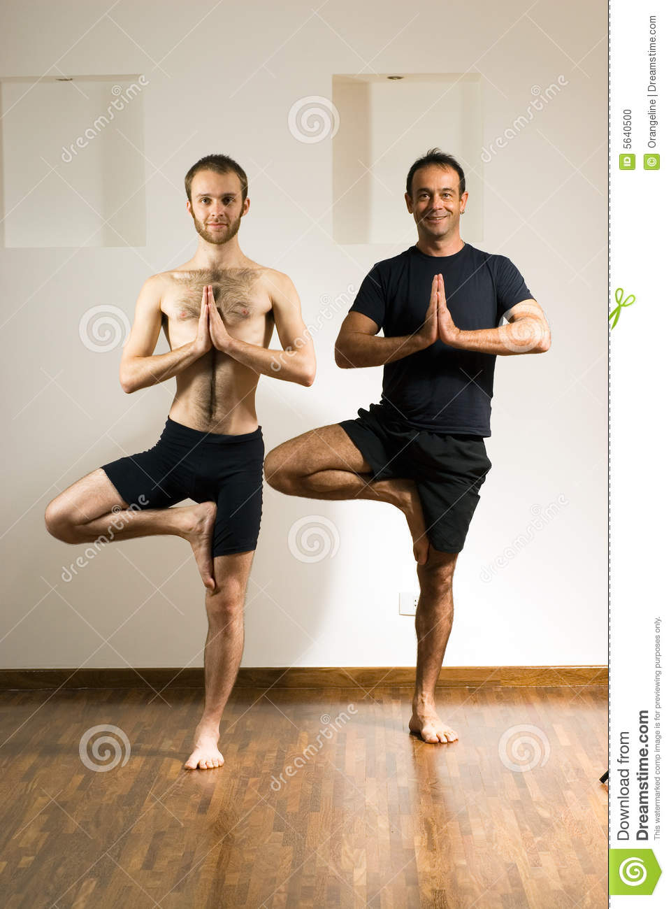 two men practicing yoga vertical stock photo image of smiling caucasian 5640500. Black Bedroom Furniture Sets. Home Design Ideas