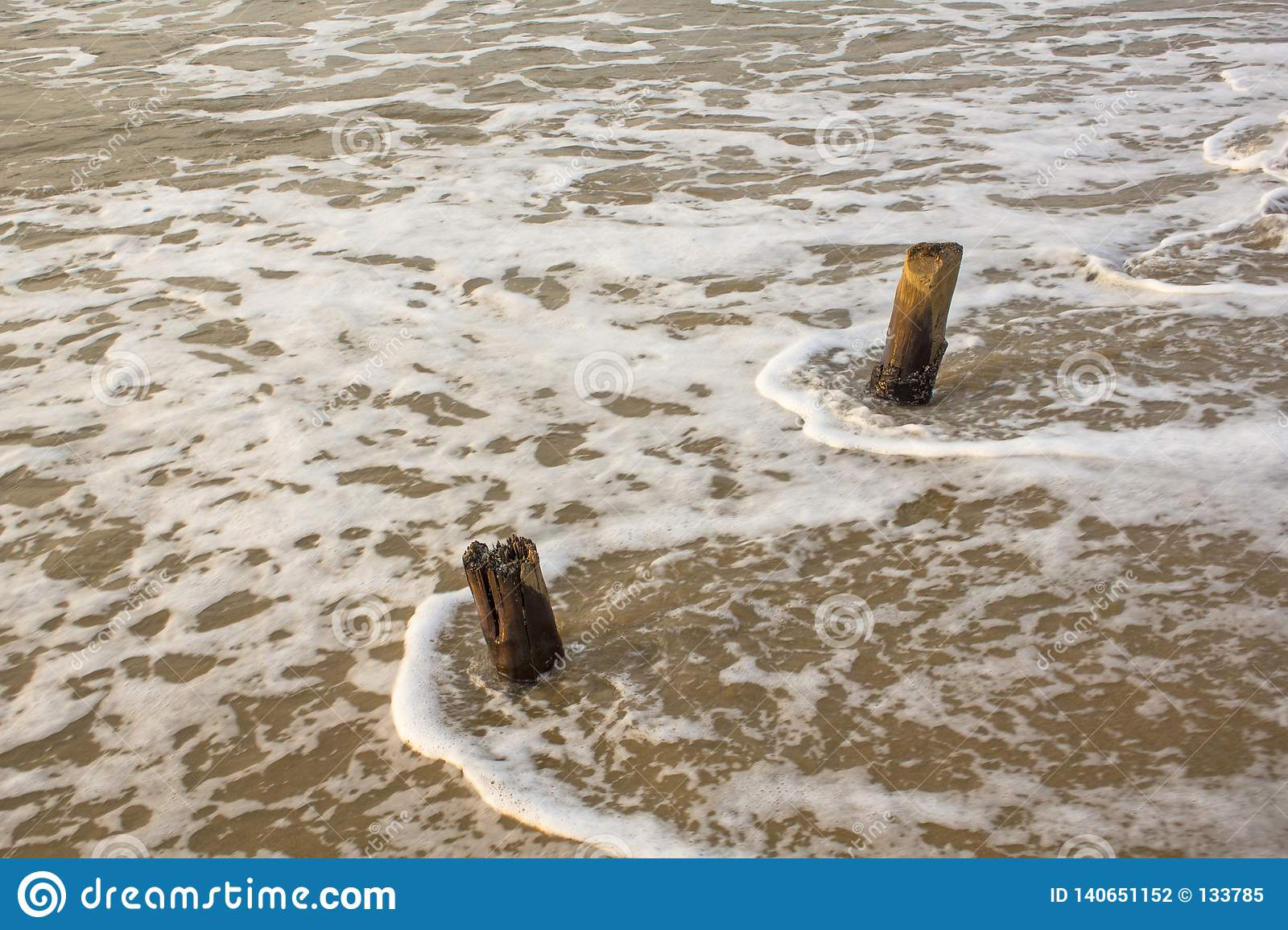 Two old wooden pillars protrude from the foamy water of the sea surf