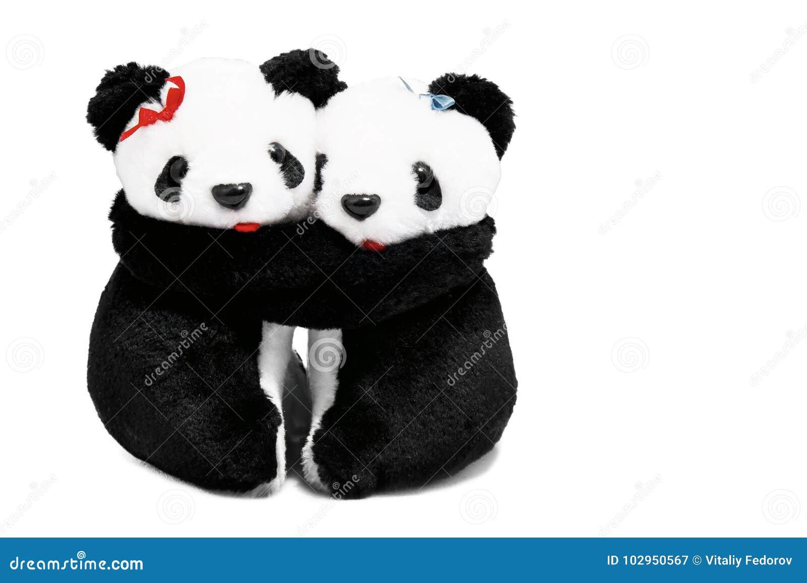 Two pandas bears on a white background