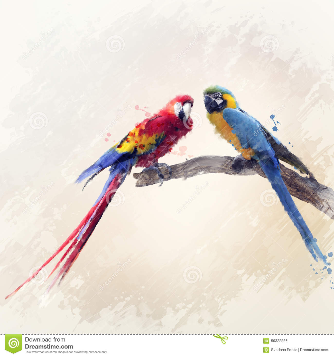 Two Parrots Watercolor Stock Illustration Image 59322836