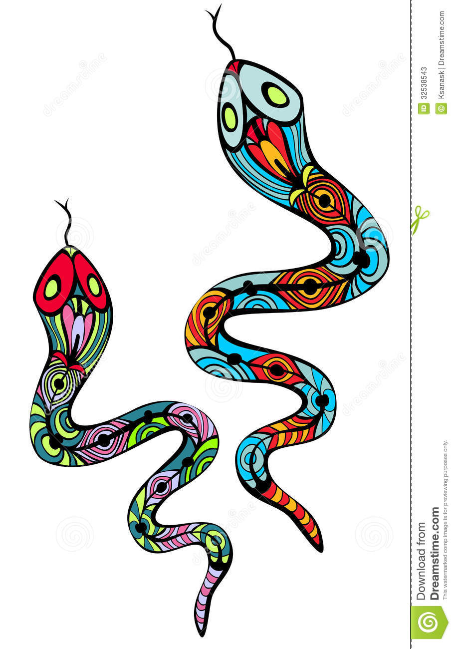 Two Patterned Snakes Stock Photos Image 32538543