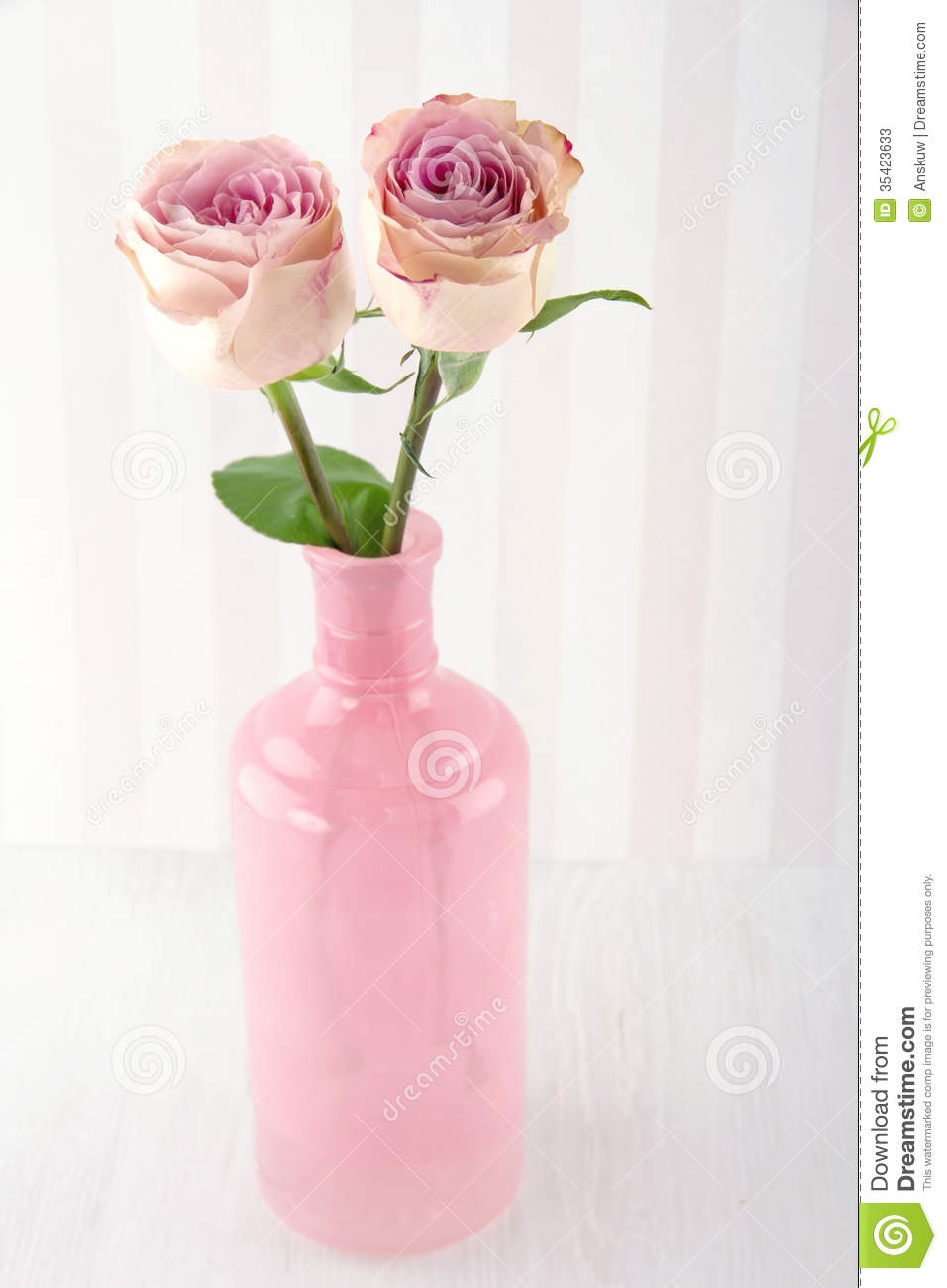 two pink roses in a glass bottle stock image image of gift nobody 35423633. Black Bedroom Furniture Sets. Home Design Ideas