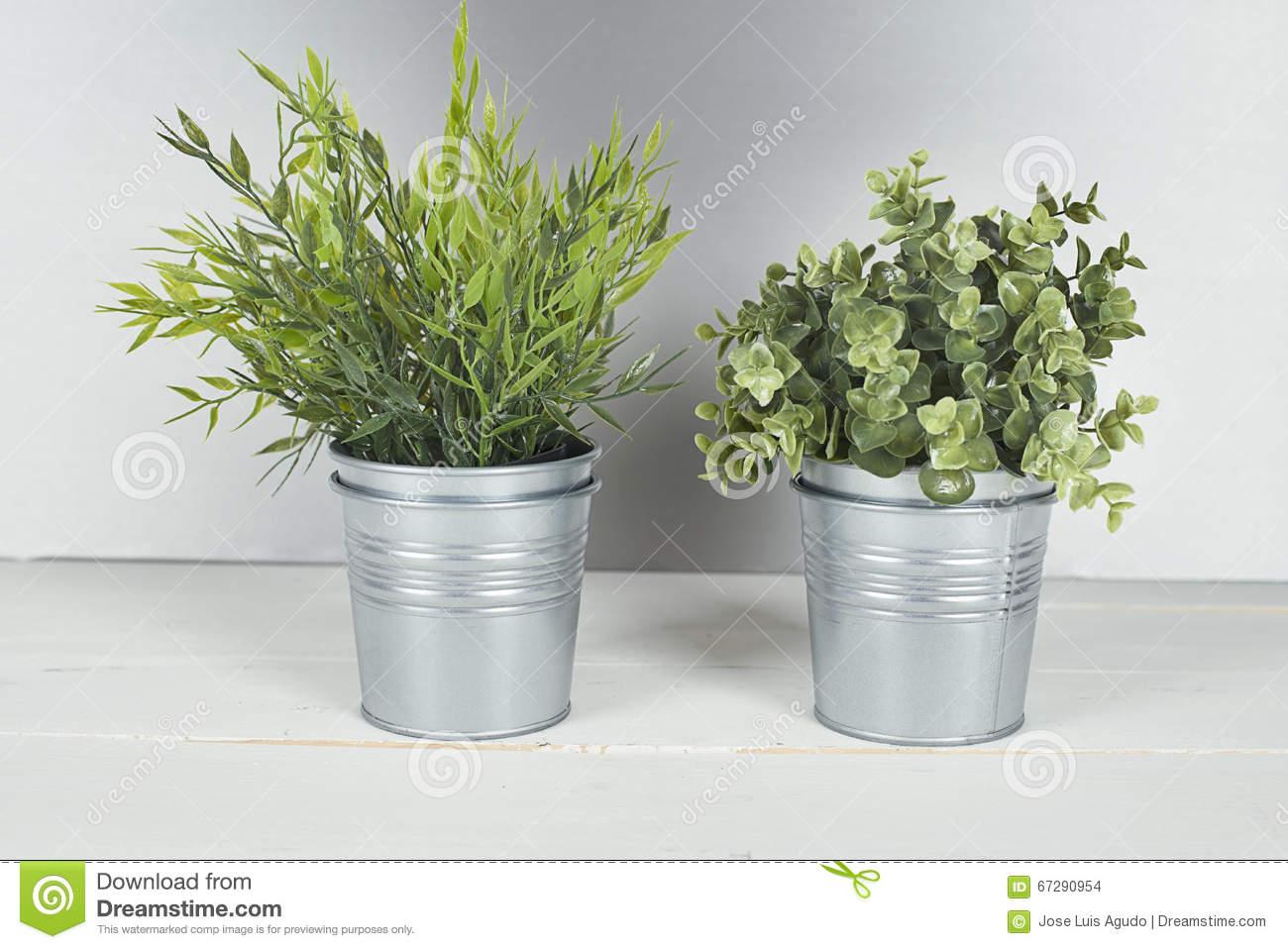 Two plants with metal pot on wooden table.