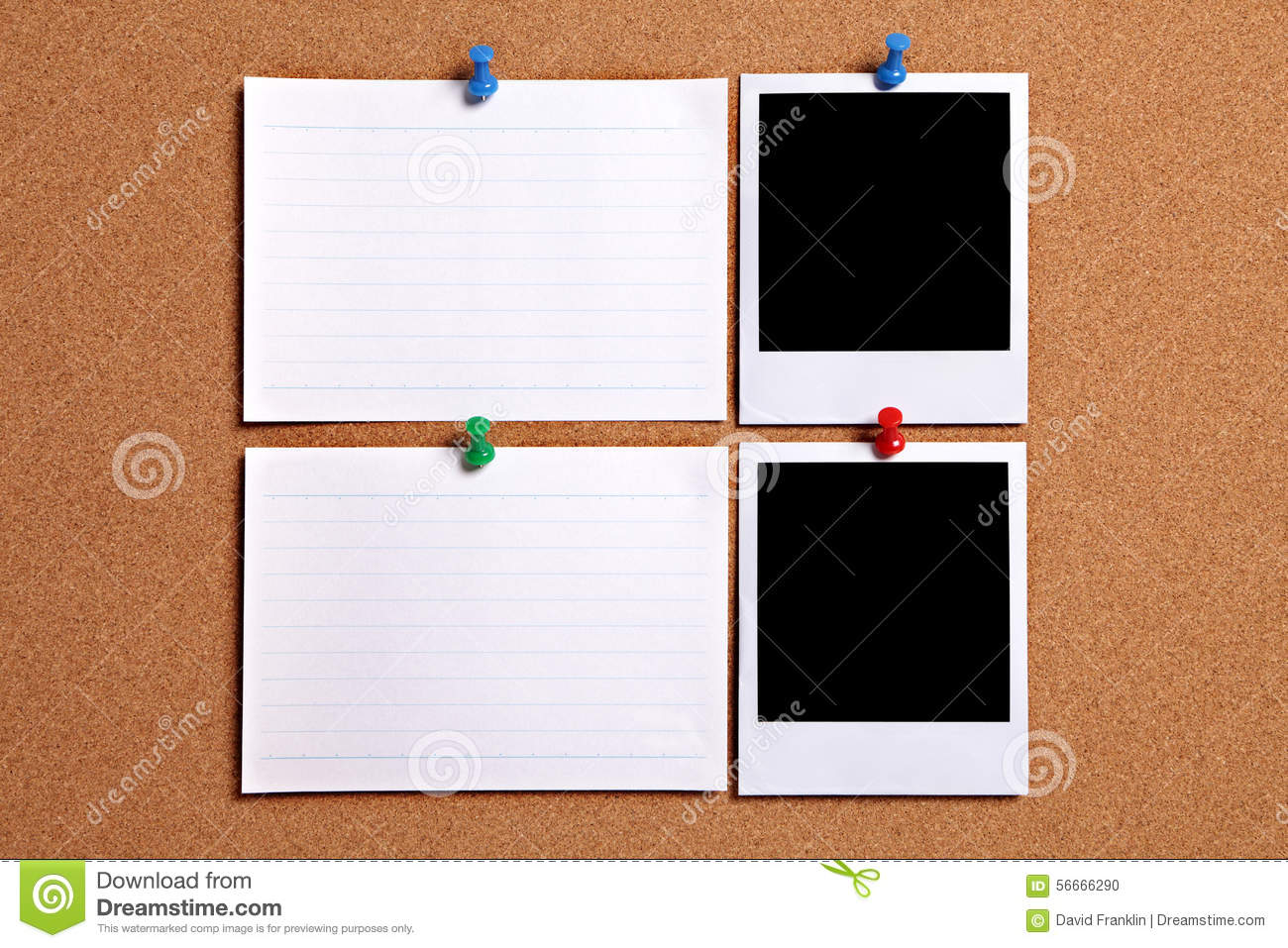 Two polaroid style photo frames with blank white note cards pinned to cork notice board, copy space