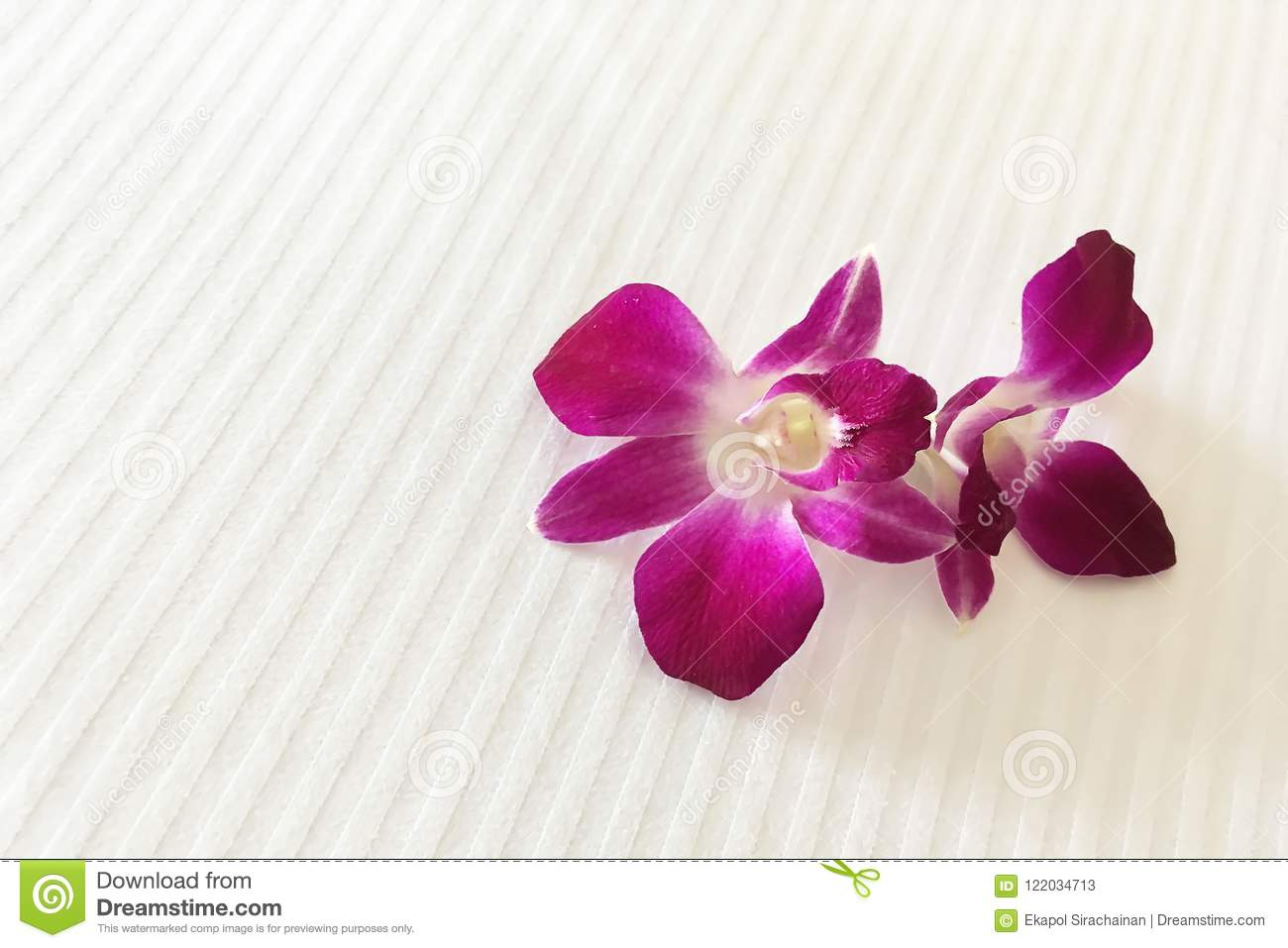 Two Purple Red Orchids On Hotel Bed Are Meaning Of Welcome  Stock