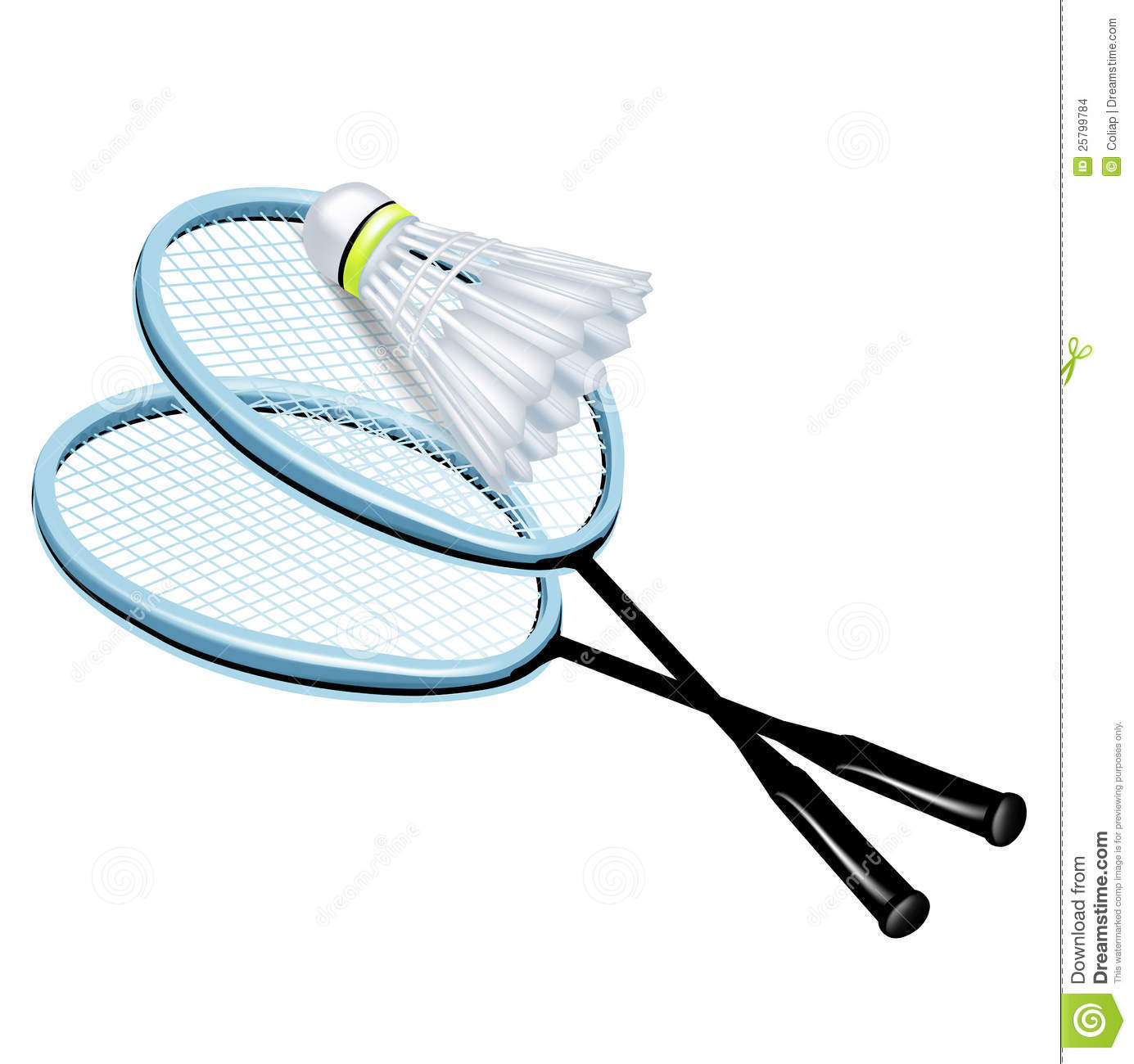 Two rackets and badminton shuttlecock isolated Badminton Racket And Shuttlecock