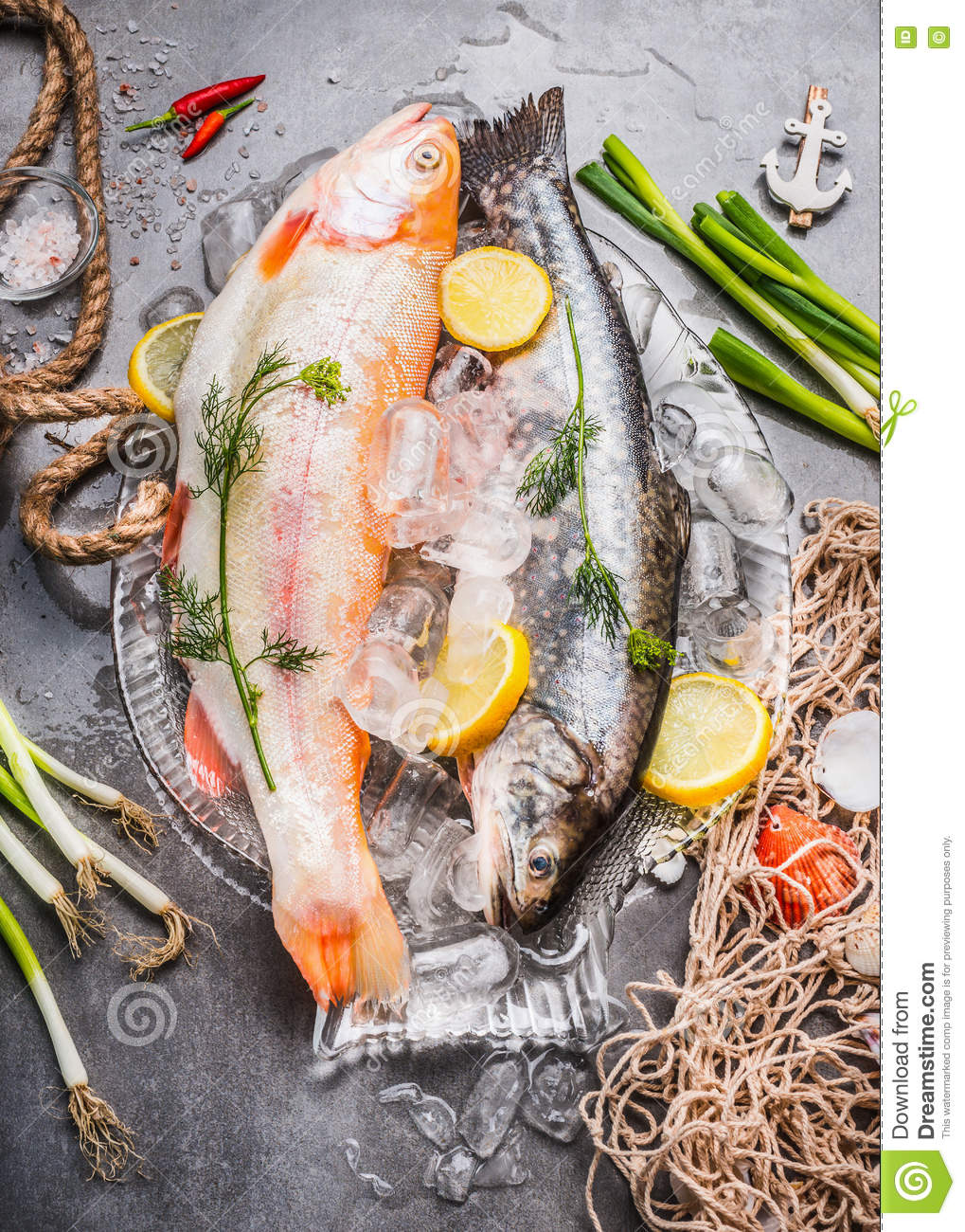 Two raw whole fish with fresh ingredients for tasty and healthy cooking. Gold Rainbow trout on concrete stone background with ice