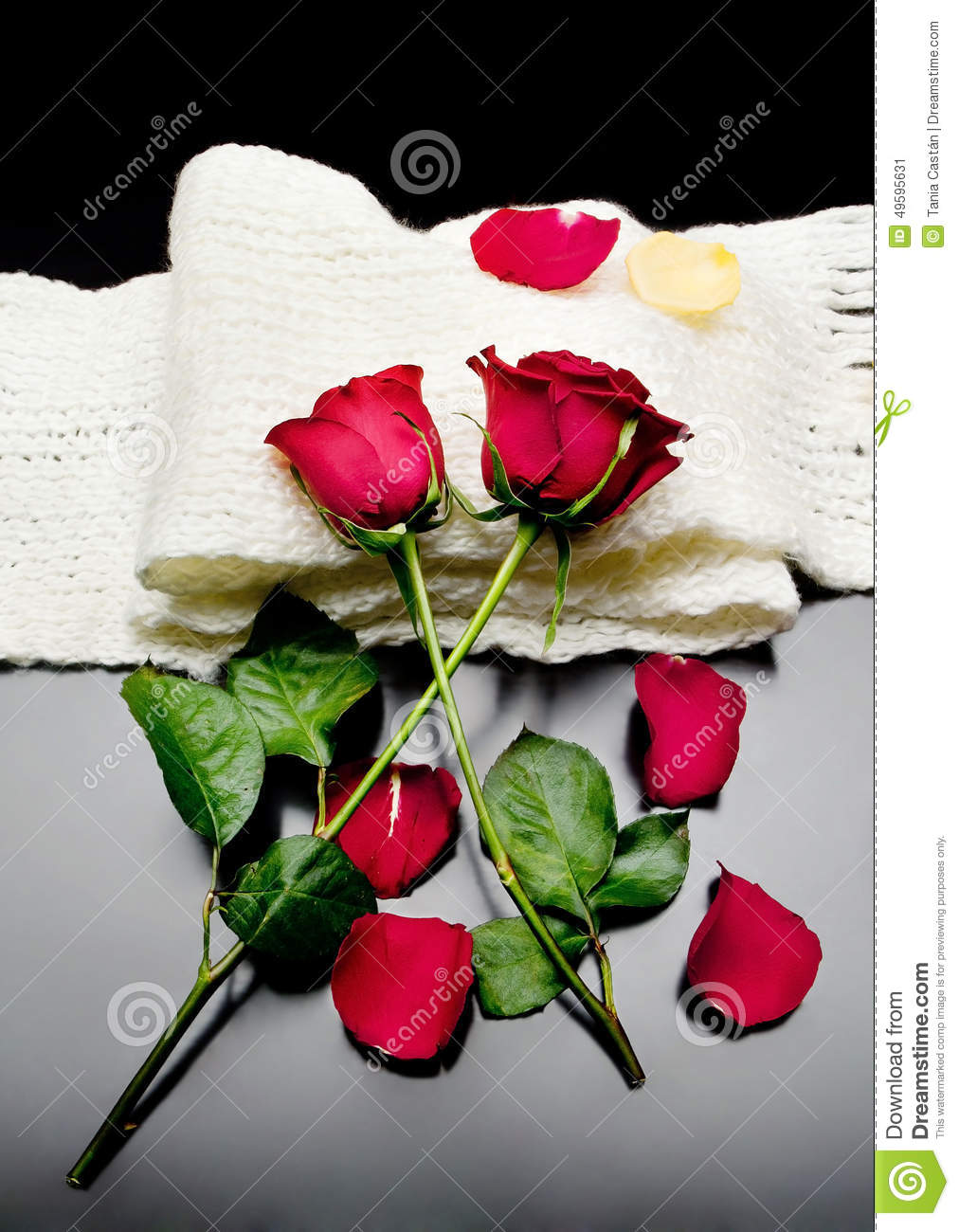 Two Red Roses Together With Red Petals On A Black ...