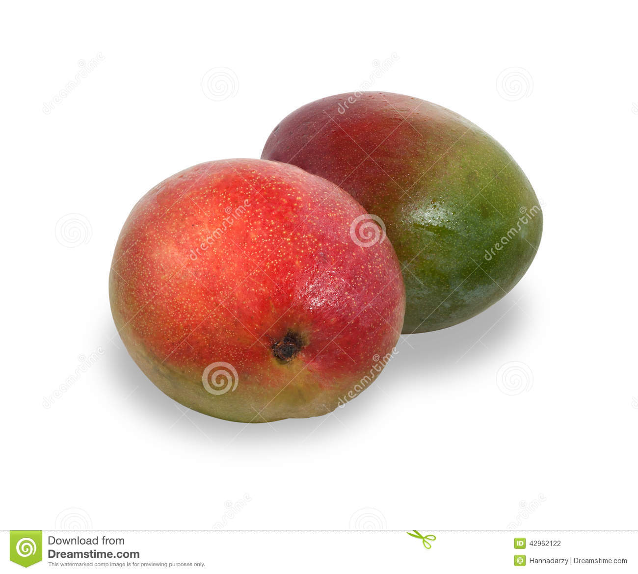 ... red and green mango fruit isolated on white background with shadow
