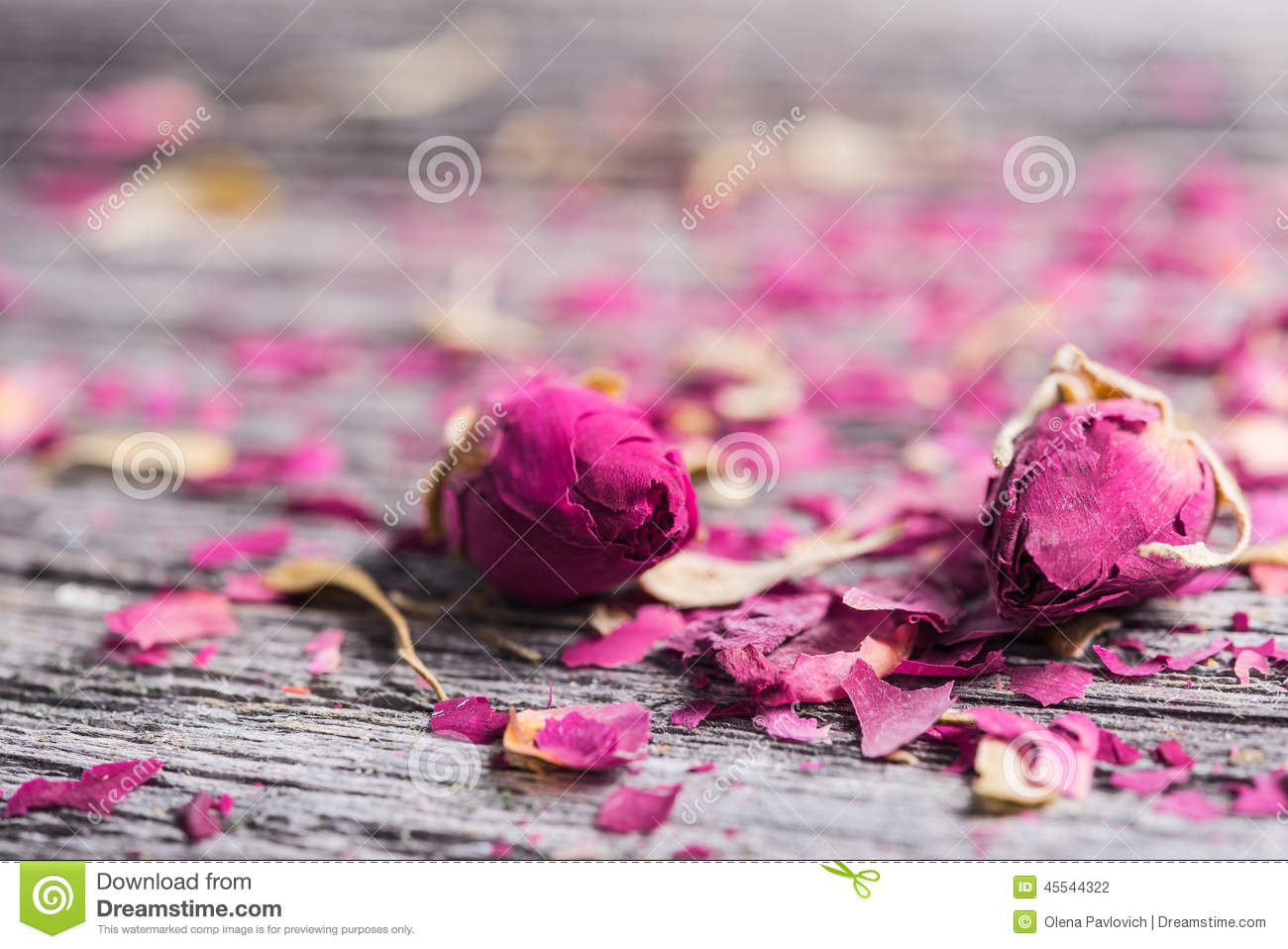 Two rose buds and petals on wooden background