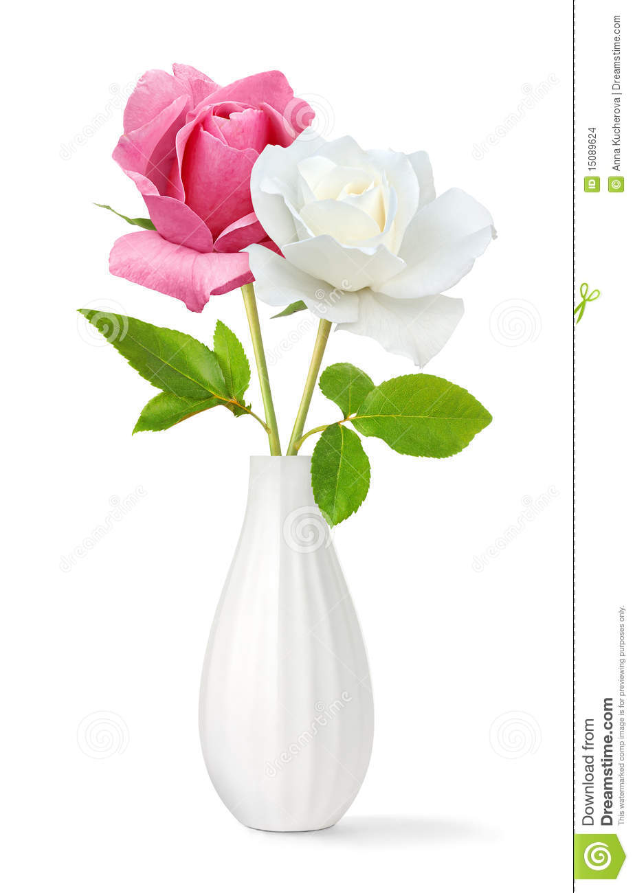 Two Roses In A Vase Stock Images Image