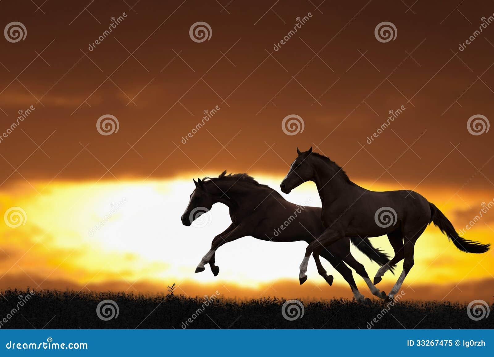 running horse clipart