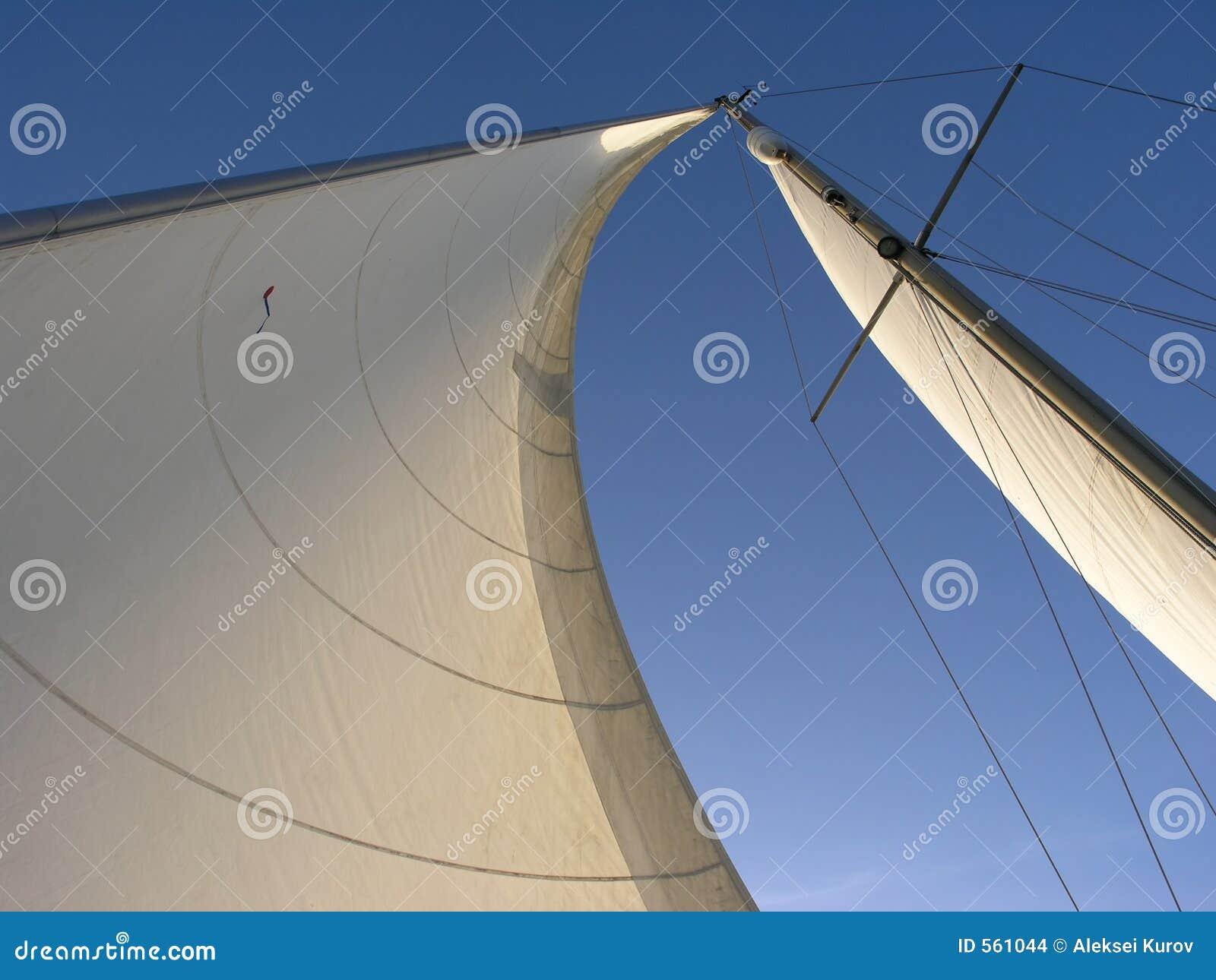 Two Sails: Genoa And Mainsail Stock Photo - Image of boating