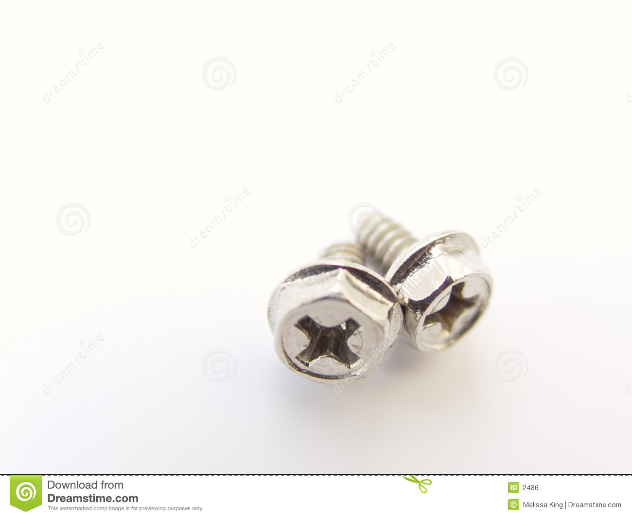 Two Small Computer Screws