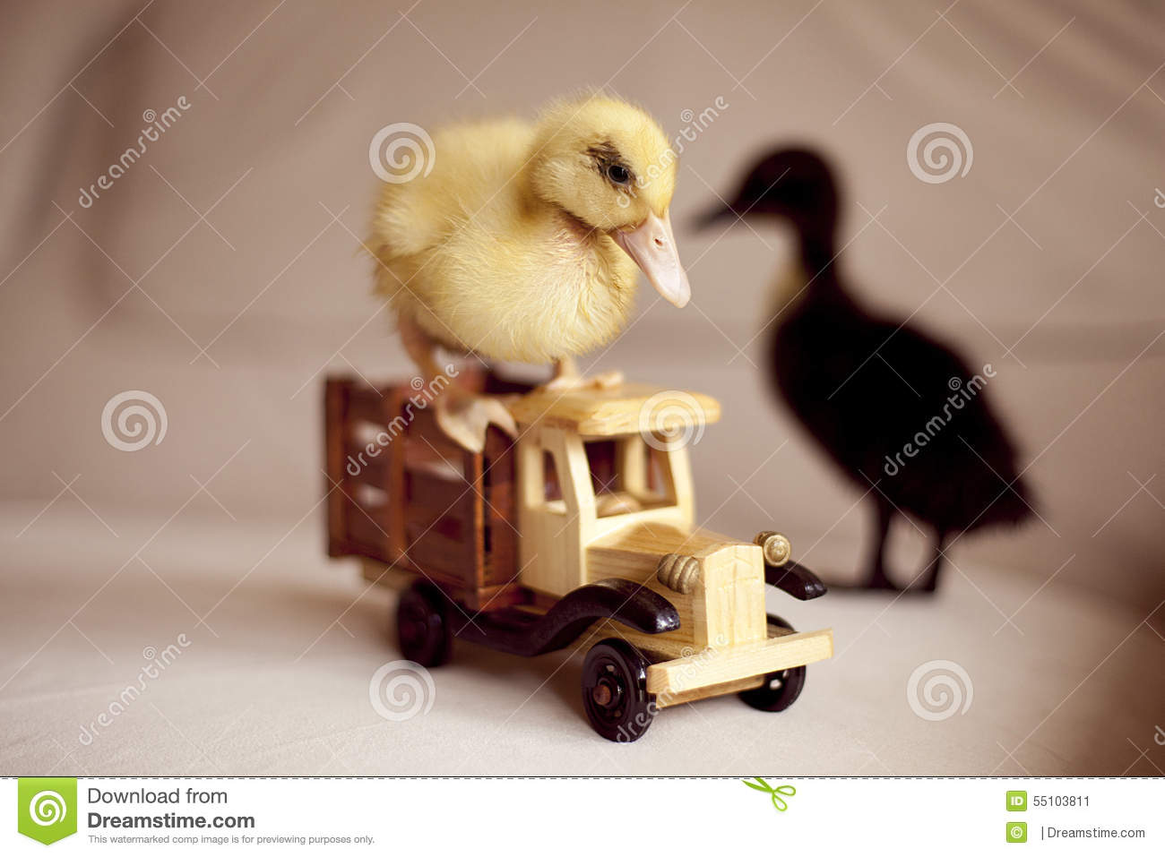 Two Small Ducks And Wooden Toy Car Stock Image - Image of kids ...