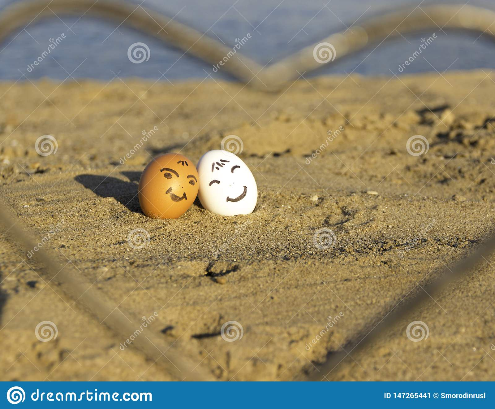 Two smiling chicken eggs on the beach