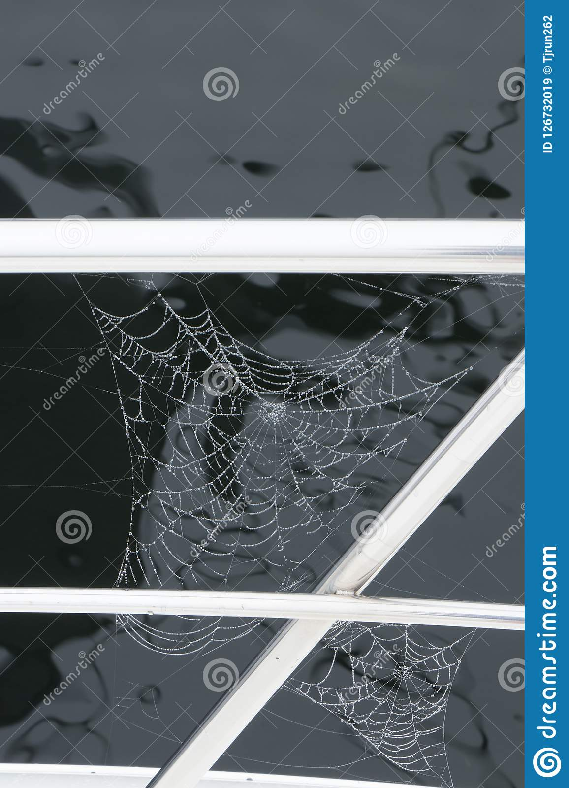 Two Spider Webs On The Railing Of A Boat Stock Image Image