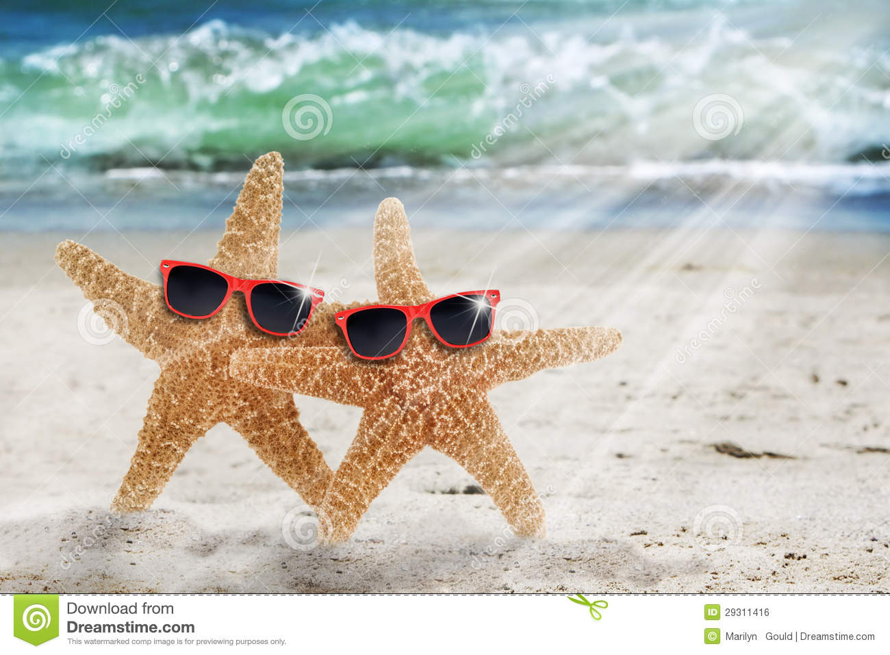 Two Starfish Beach Sunglasses