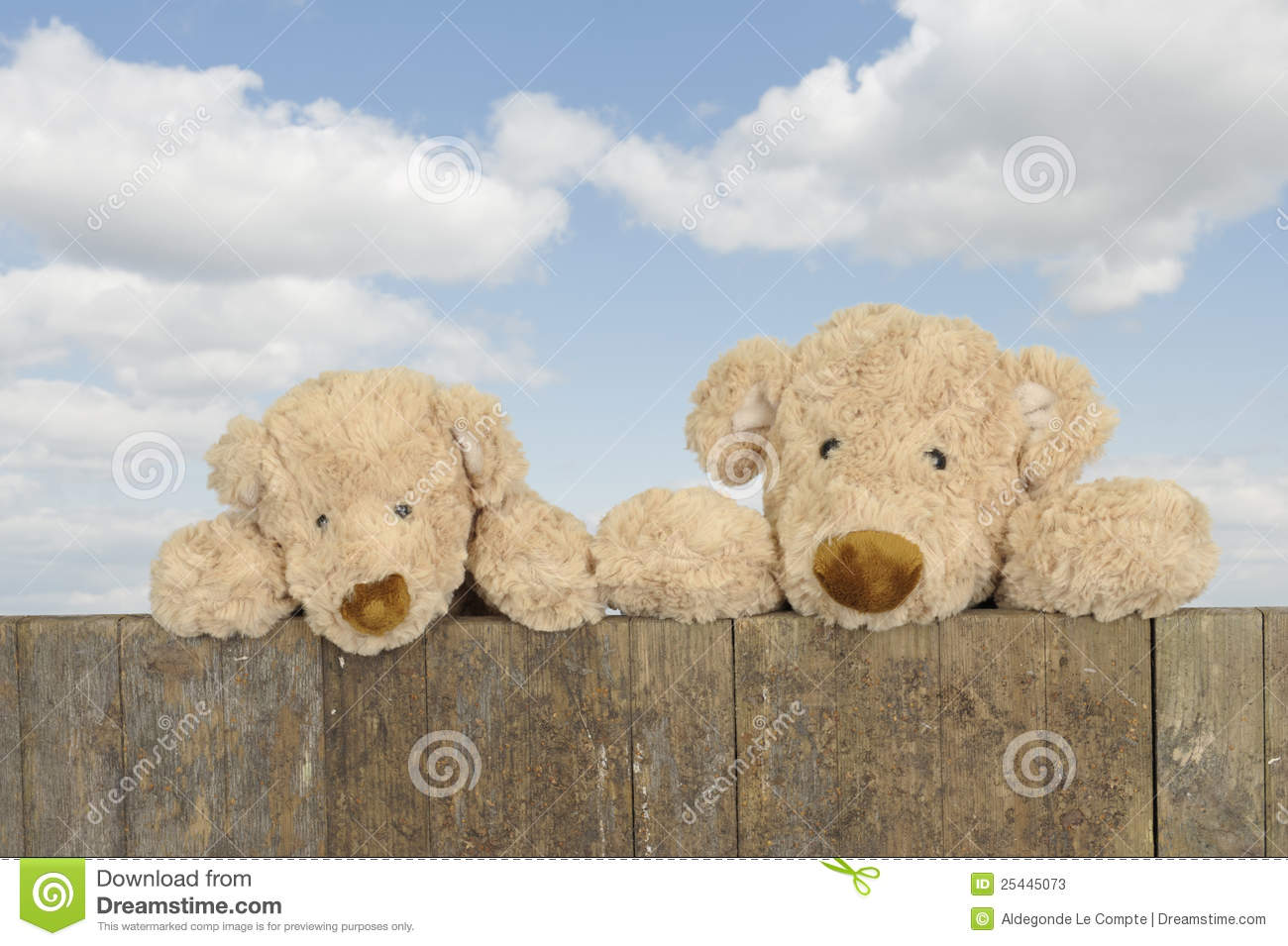 Two teddy bears looking from above a fence
