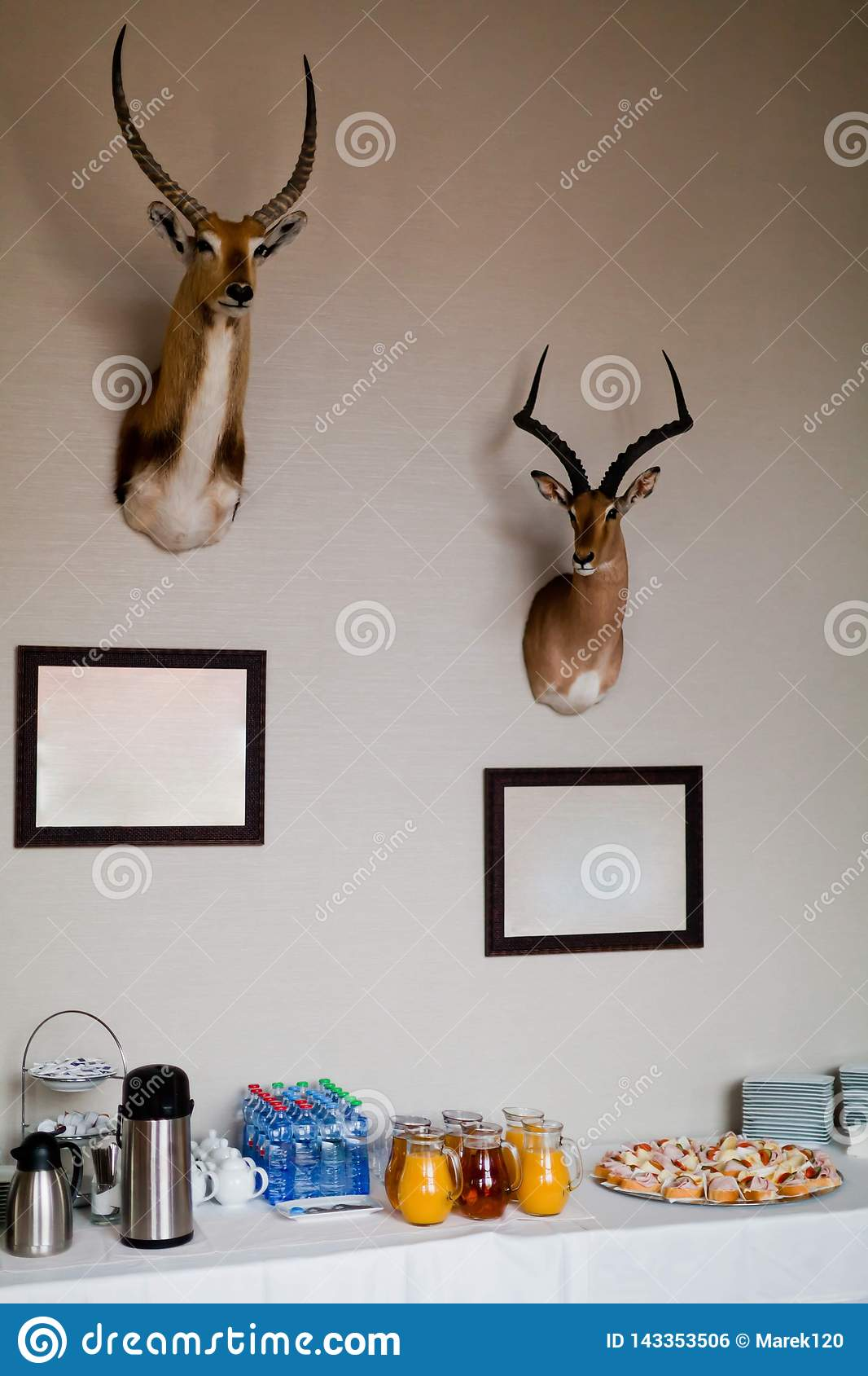 Two trophies of antelope on wall above coffee break