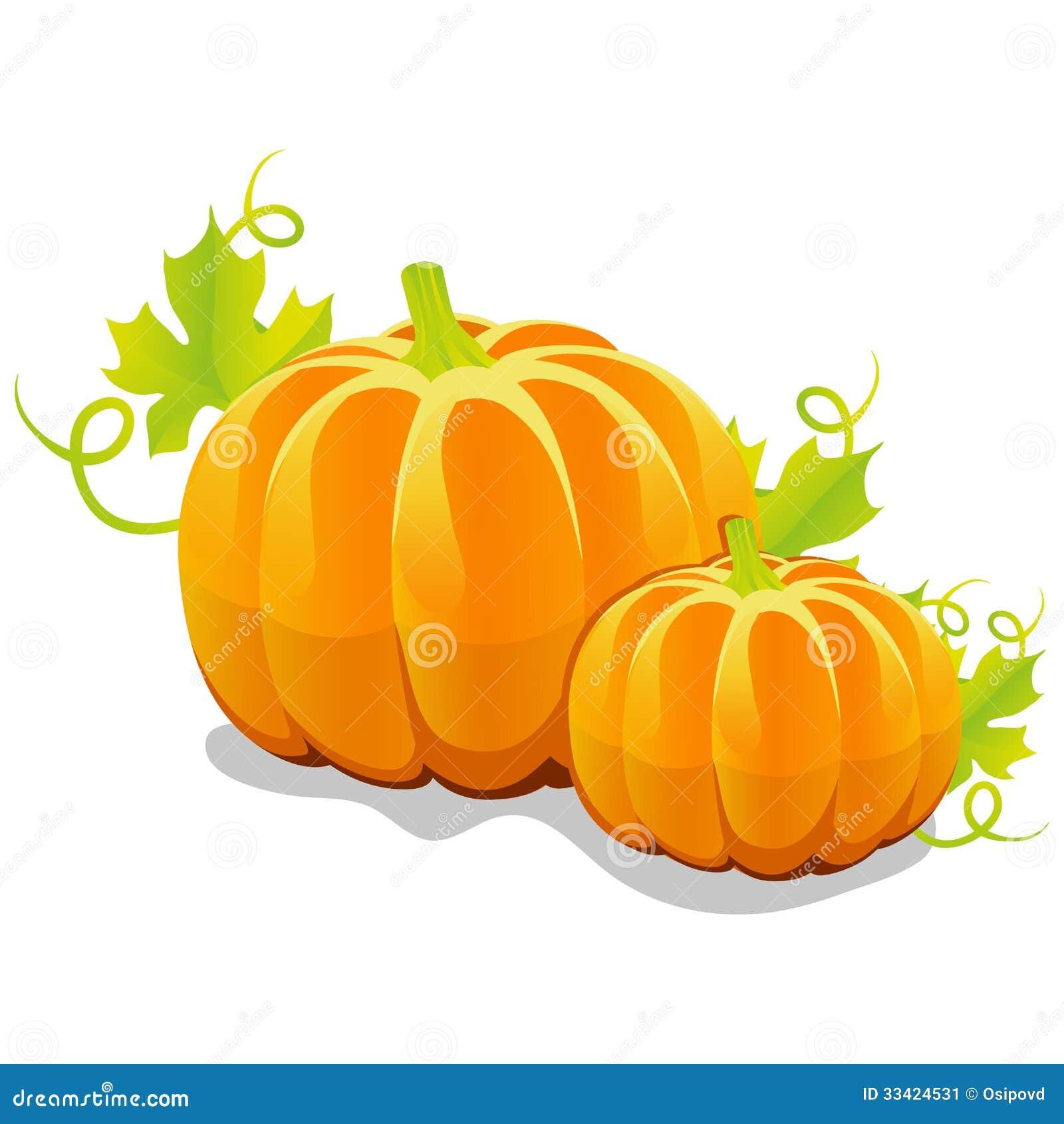 Two vector pumpkin stock vector. Illustration of natural - 33424531