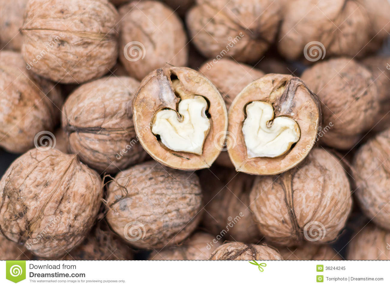 Two walnuts hearts