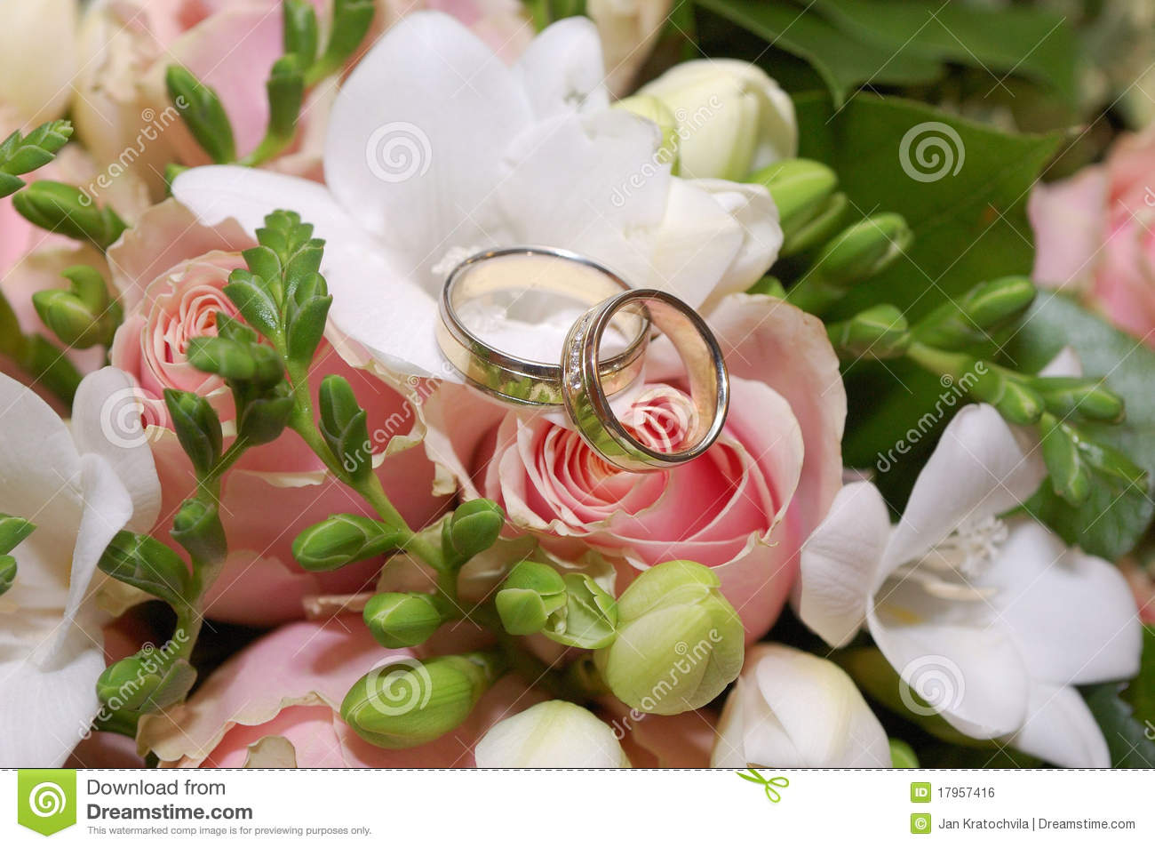 Two Wedding Rings On Pink Rose Flower Royalty Free Stock