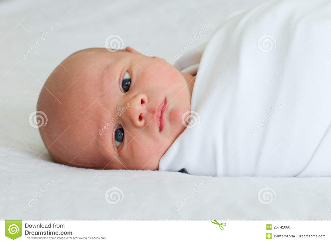 Two week old newborn bundled on bed