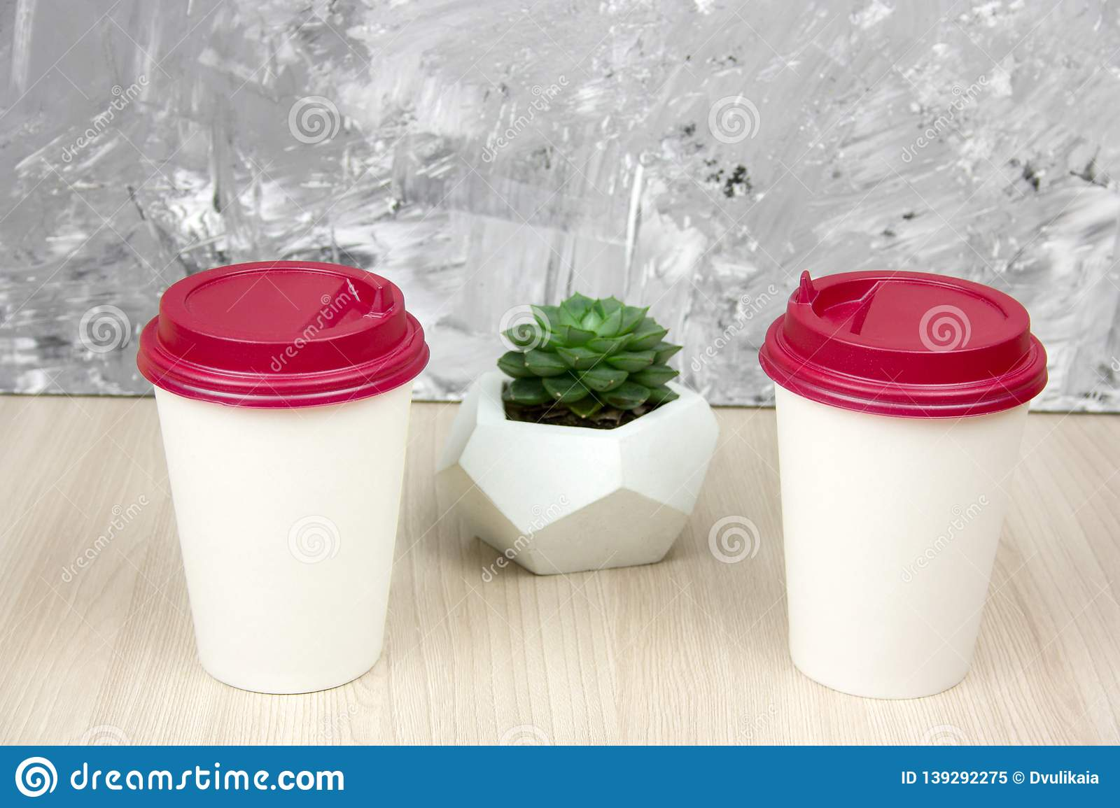 Two White Coffee To Go Cups And Succulent Stock Image