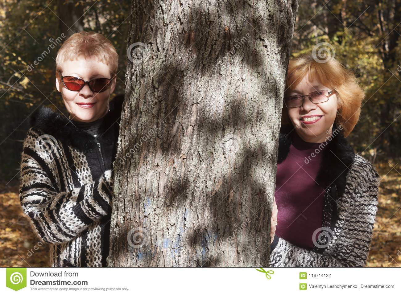 Two Women Of A Mature Age Stock Photo Image Of Smile 116714122