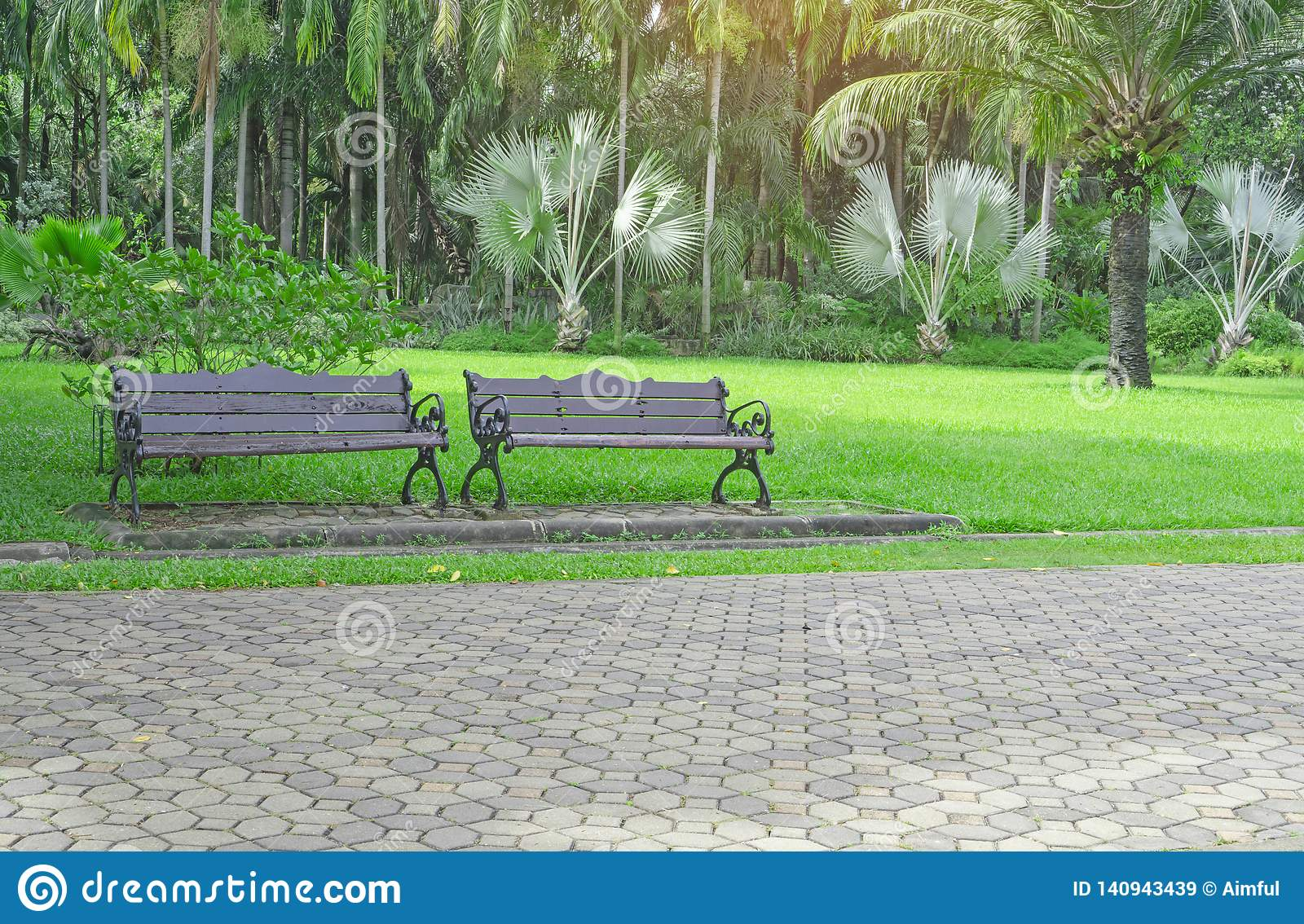 Excellent Two Wooden Bench On Fresh Green Carpet Grass Yard Smooth Evergreenethics Interior Chair Design Evergreenethicsorg