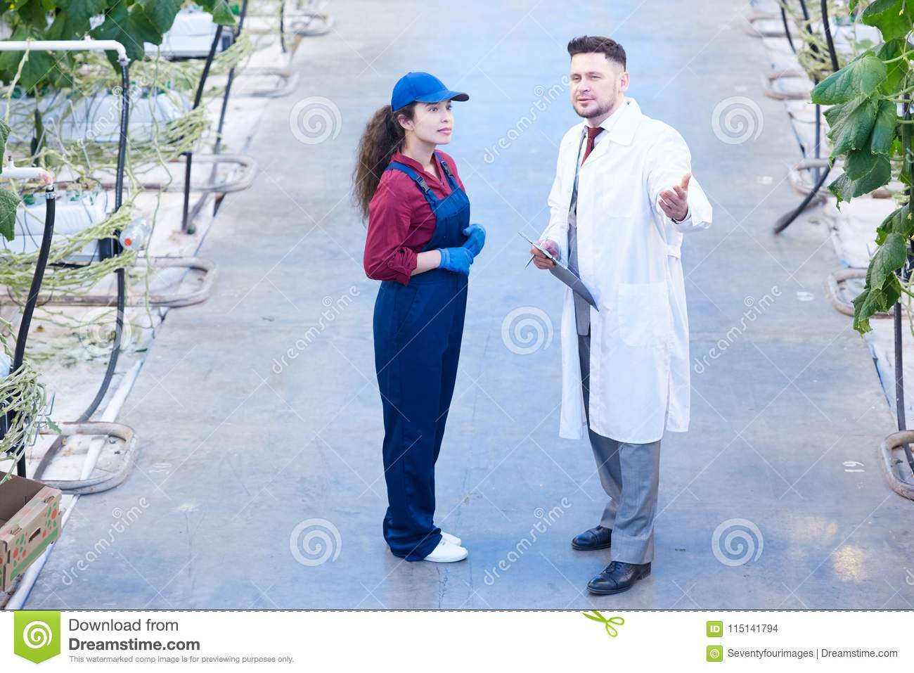 Two Workers In Modern Greenhouse Stock Photo - Image of female