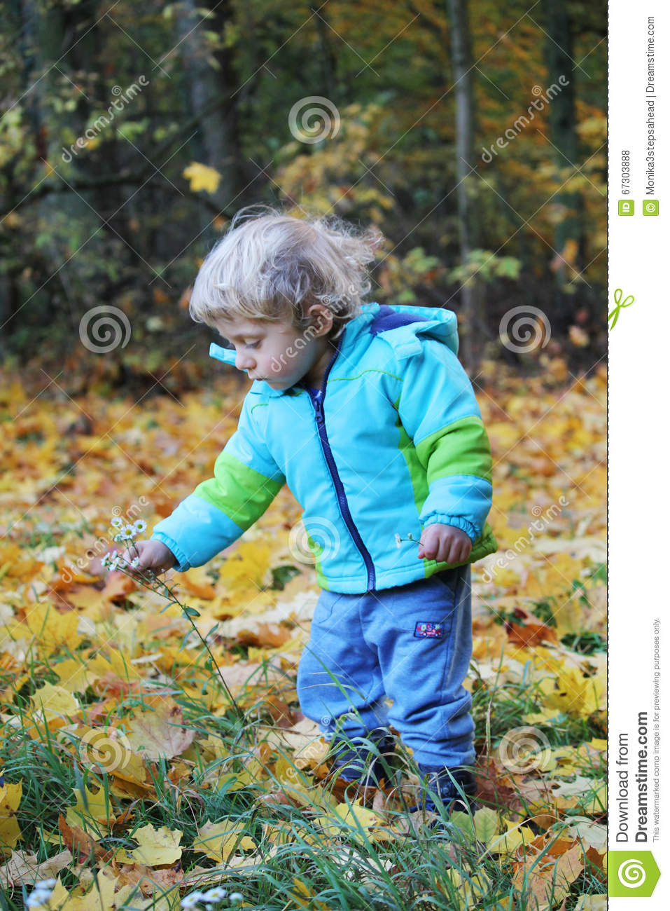 Two years old boy plucking flowers in an autumn forest