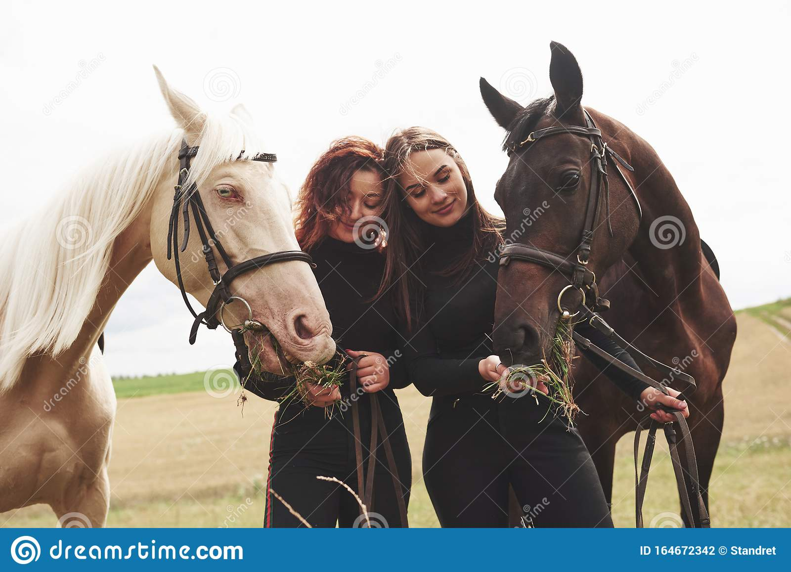 Two Young Beautiful Girls In Gear For Riding Near Their Horses They Love Animals Stock Photo Image Of Friends Beauty 164672342