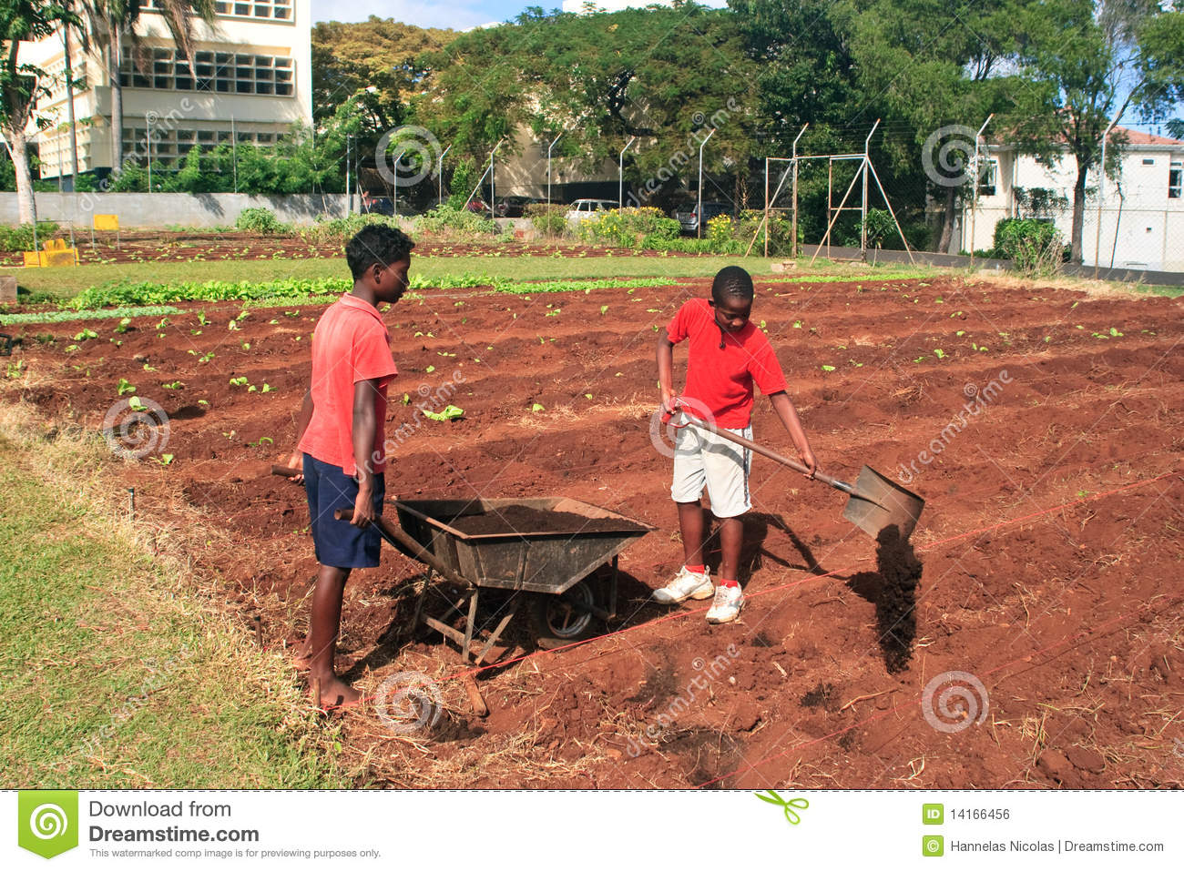 Two young boys preparing the soil royalty free stock image for Soil young s modulus