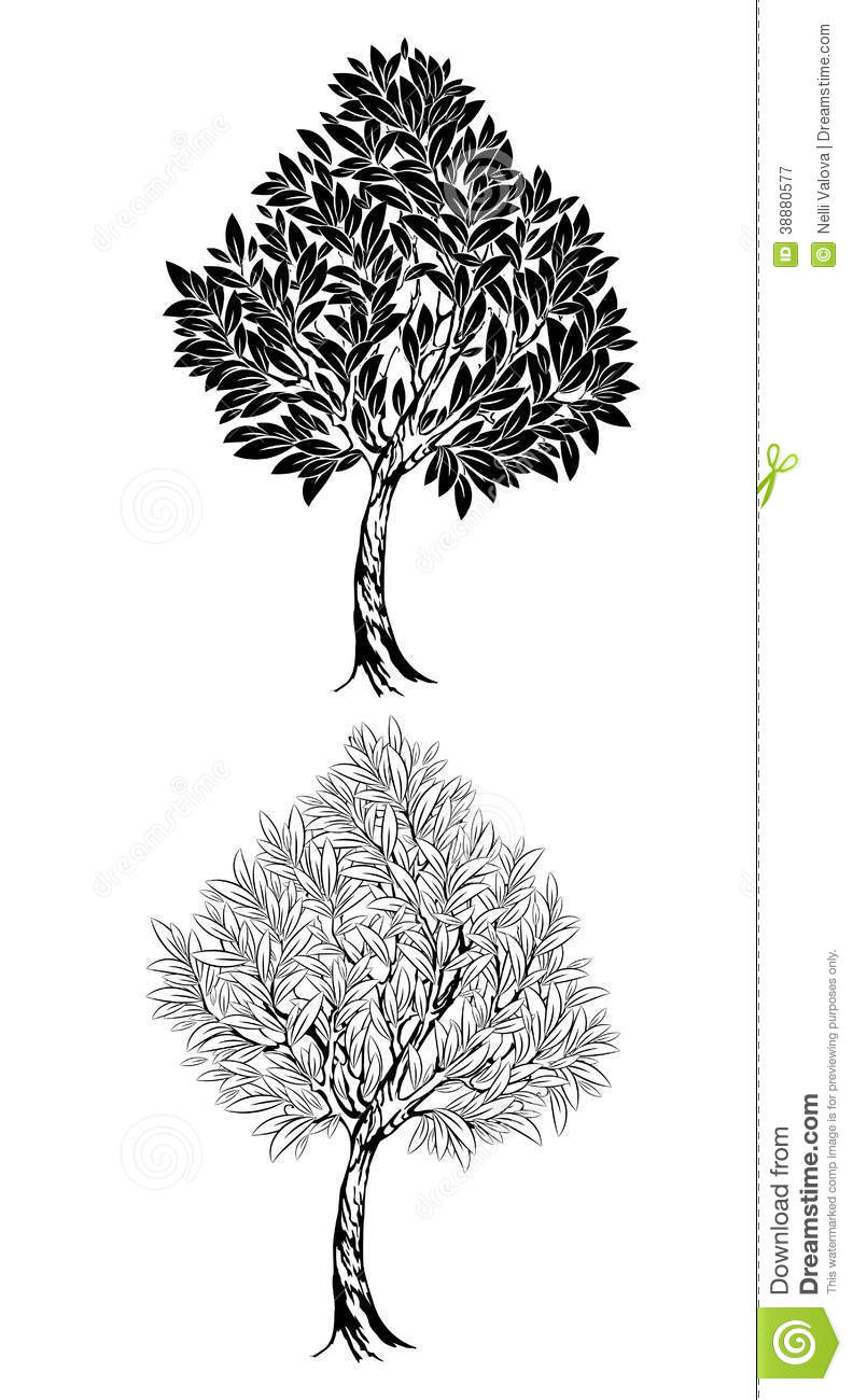 two young contour tree stock vector