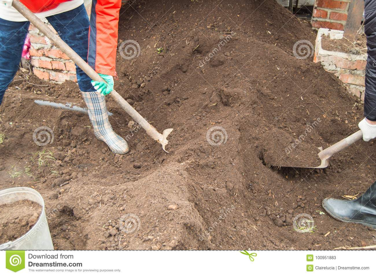 Two young farmer man and woman working in the garden, digging the soil with a shovel