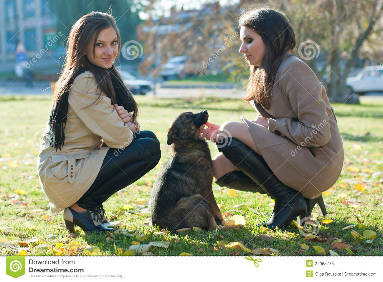 the lady with the dog by The lady with the dog (russian: дама с собачкой, translit dama s sobachkoy) is a 1960 soviet drama film directed by iosif kheifitsit was entered into the 1960 cannes film festival.