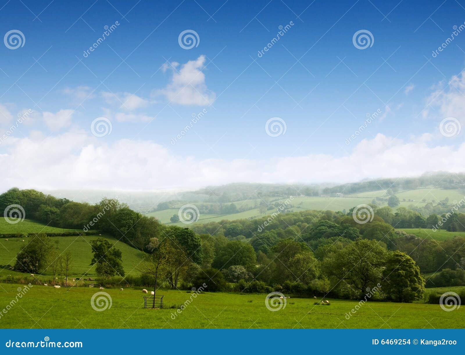 Twoje sny krajobrazu