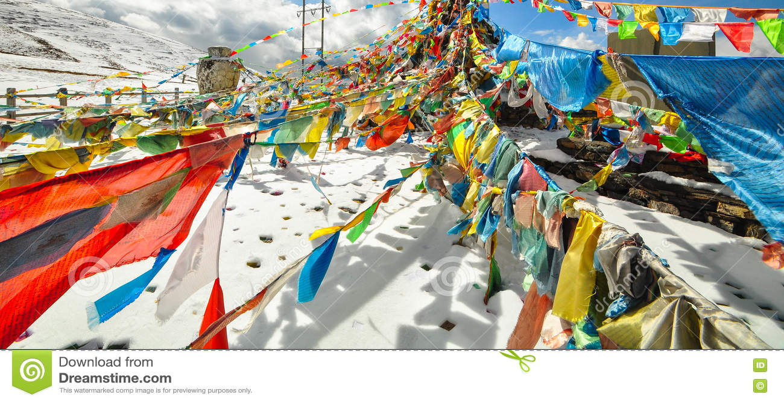 Tybet flaga