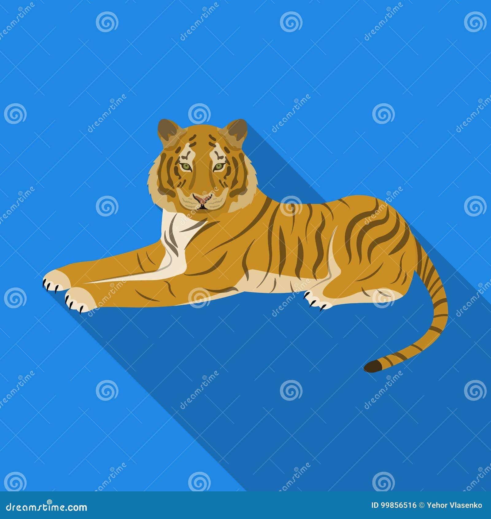 Tygrys, drapieżczy zwierzę Belgijski tygrys, wielkiego dzikiego kota pojedyncza ikona w mieszkanie stylu symbolu wektorowym zapas