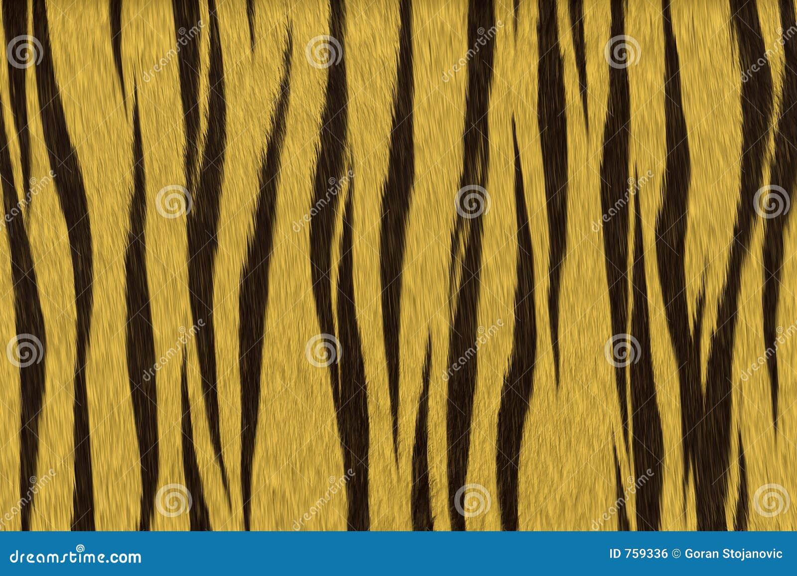 Tygrys futerkowy